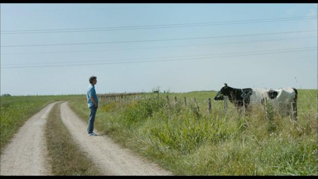 Petit paysan (2017) de Hubert Charuel : Pierre abat la vache folle (HD)
